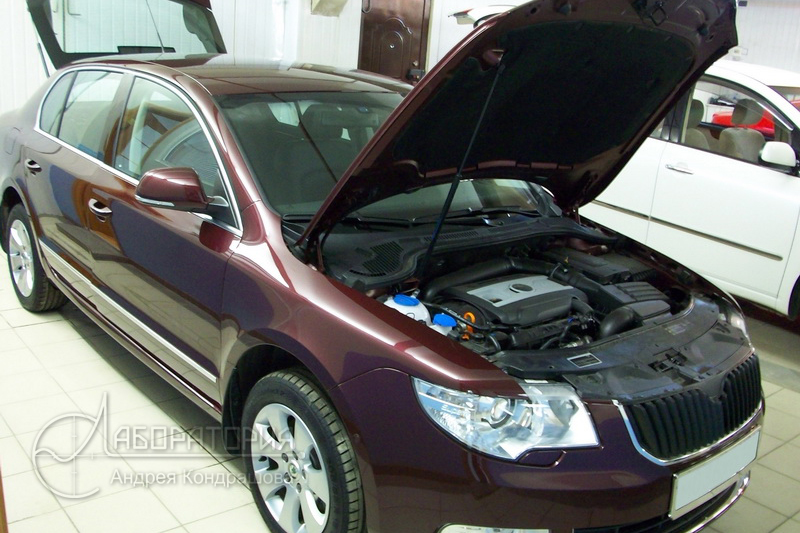 Skoda SuperB (II)